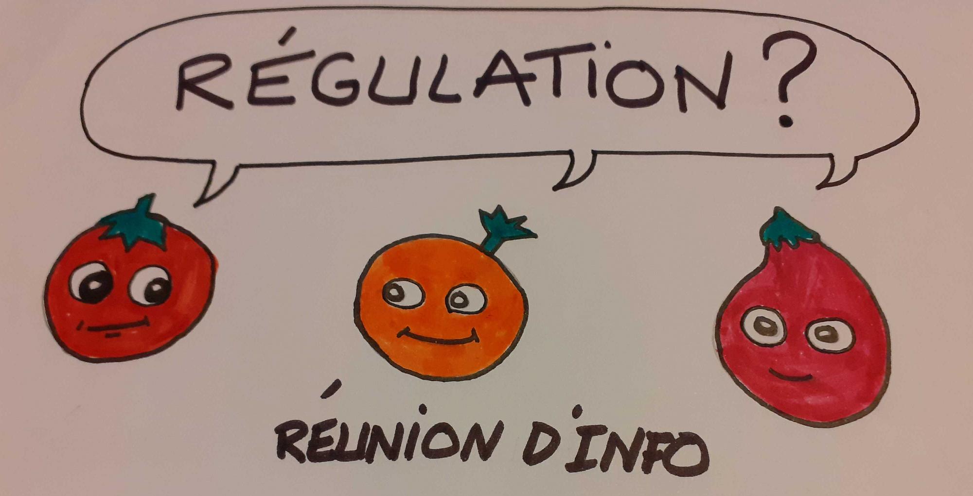 cercle_de_regul_reu_info